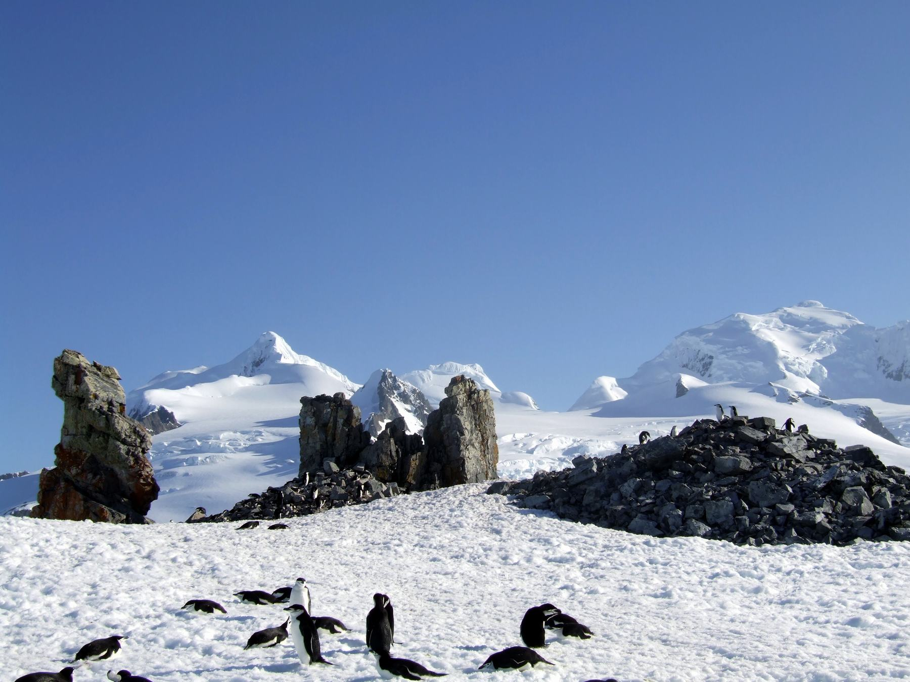 Antarctica expedition with the Anne-Margaretha