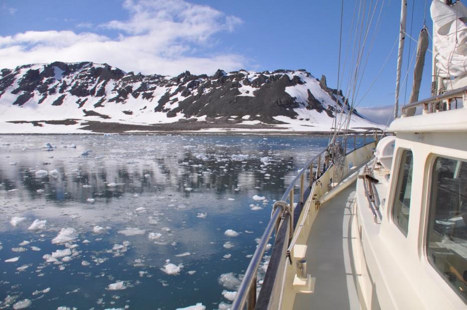 yankee-harbour-antarctica